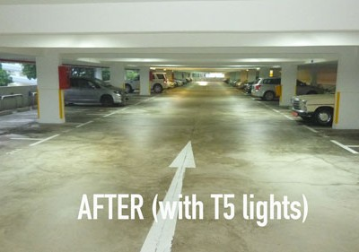 T5 Fluorescent